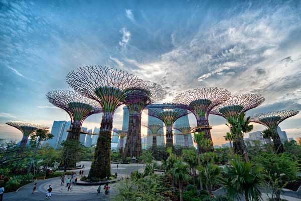 Biophilic architecture gardens by the bay in Singapore